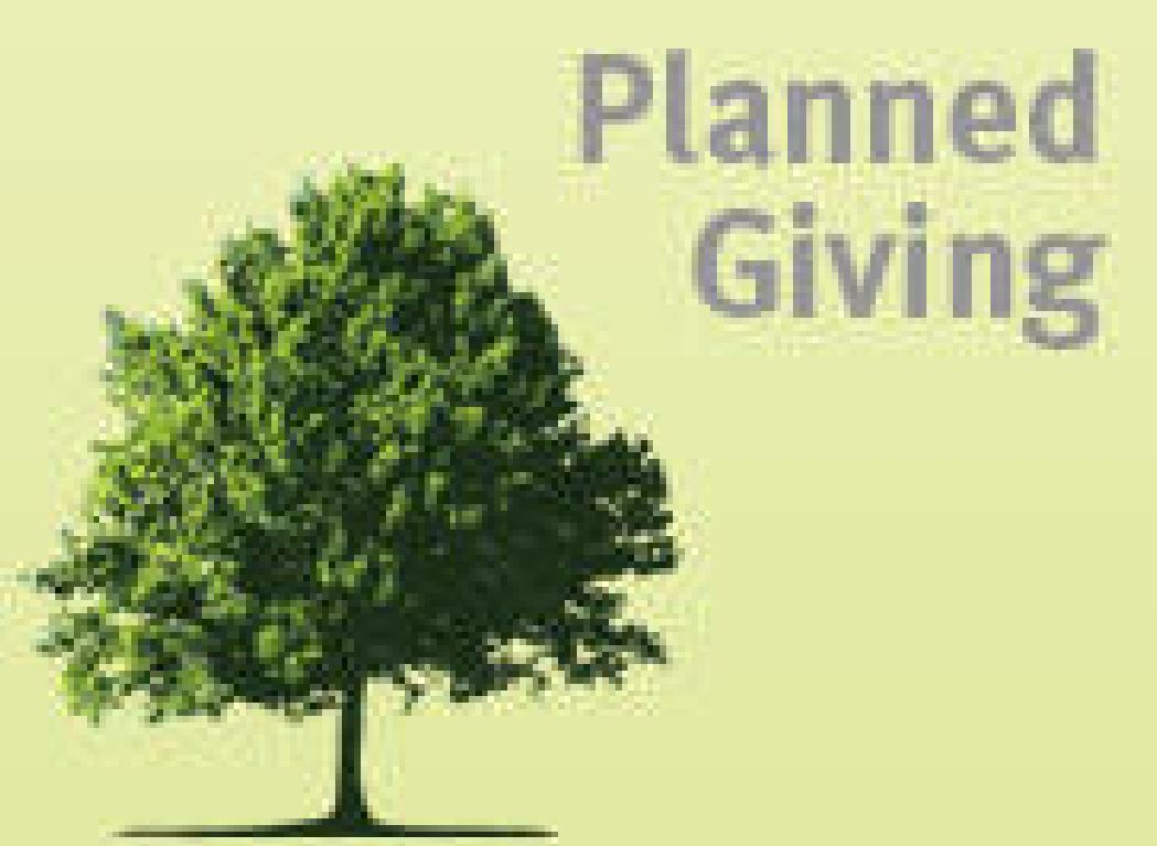 Planned Giving And Endowment Brochure General Template Planned - Planned giving brochures templates